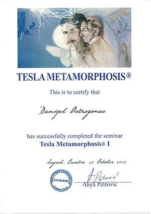 Certificate - Tesla Metamorphosis